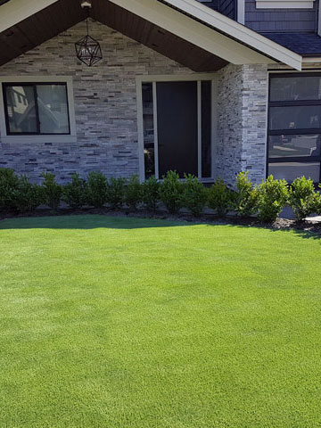 Artificial Grass Landscape Artificial grass in landscaping mission maple ridge coquitlam artificial grass in landscaping mission maple ridge coquitlam abbotsford and langley bc workwithnaturefo