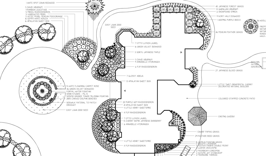 Sidhu - Before landscape design