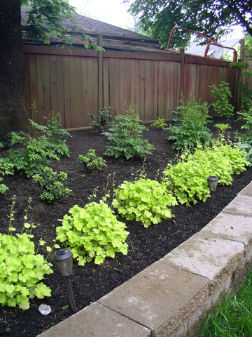 Landscape Design Idea Gallery of Plants