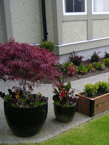 Design Idea Gallery of Potted Planters in BC Canada
