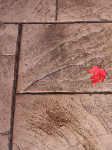 Concrete finishes including brushed, exposed, or stamped for patios and walkways